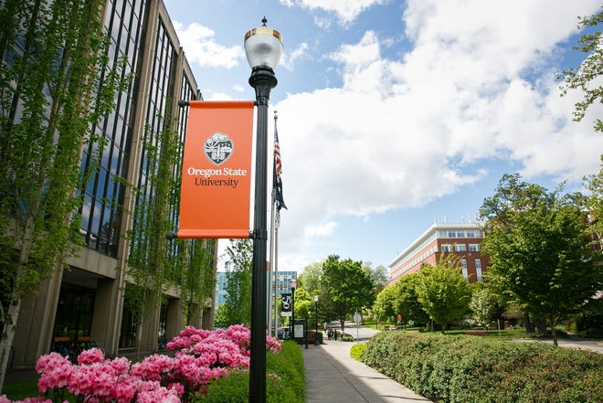 The Oregon State University campus in Corvallis in May 2018.
