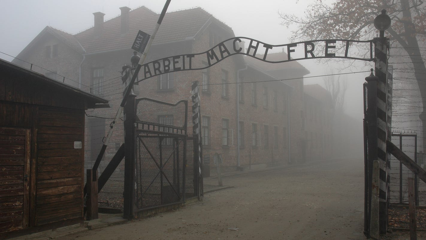 Study finds young Americans are shockingly ignorant of the Holocaust