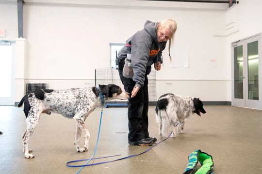 Lisa Marvin, an ASPCA Behavior Rehabilitation Specialist, works with Speck on following her using hand-targeting during a treatment session at the ASPCA's Behavioral Rehabilitation Center in Weaverville on Dec. 13, 2019.