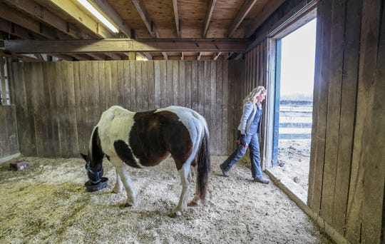 Jessica Glaab visits with Hope, a free-roaming horse rescued from Eastern Kentucky. Hope was one of three horses rescued after the massacre of 20 horses and now lives at the Kentucky Humane Society Farm in Simpsonville. Jan. 21, 2020