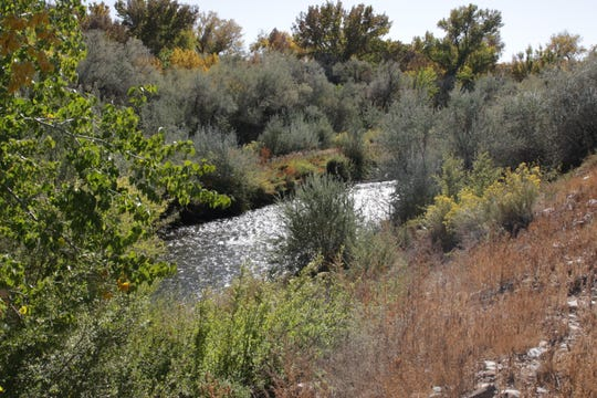 The vacant 2-acre site targeted for development includes excellent views of the Animas River and the surrounding bosque.