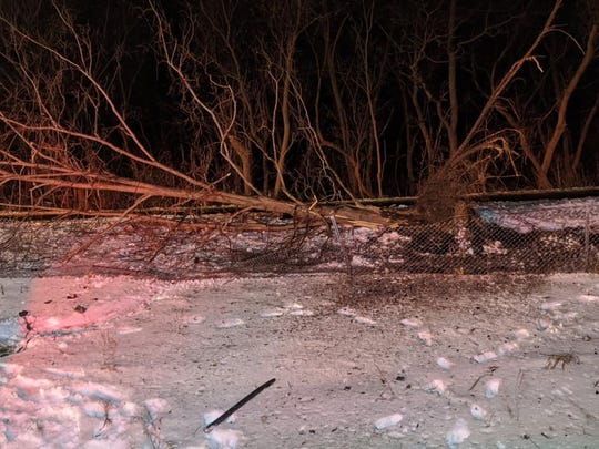 Lyon Township firefighters were dispatched to this rollover crash on Thursday, Jan. 23, 2020.  The impact uprooted a tree.