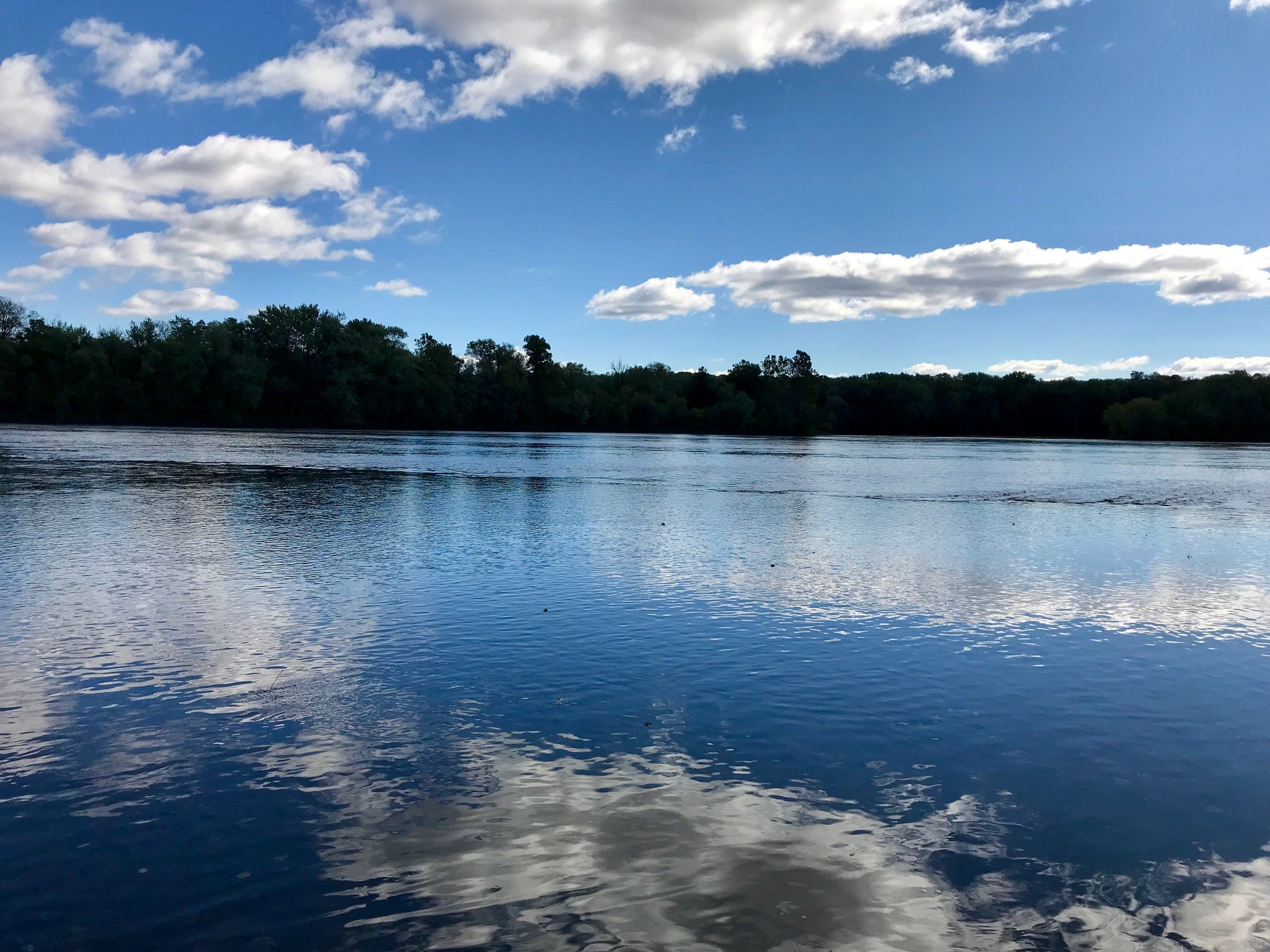 Pollutants lurking below the Susquehanna River's surface include nitrogen, phosphorus and sediment. This view of the river is near Selinsgrove, Pa.