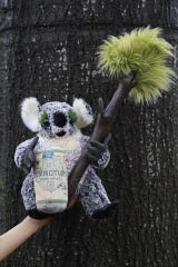 Great Raft Brewing has partnered with Earth Wrinkles to raffle a custom made stuffed koala. Proceeds from the raffle tickets sold will be donated to WIRES Wildlife Rescue.