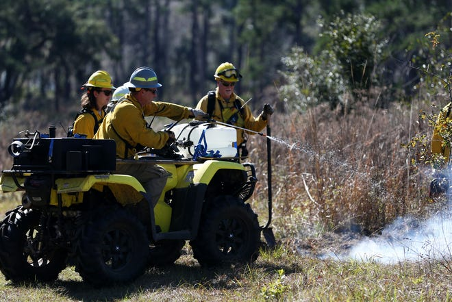 Prescribed burn managers conduct a burn demonstration during the Red Hills Fire Festival at Tall Timbers on Saturday, Jan. 25, 2020.