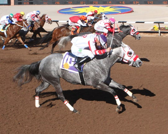 Champagne Room won the 400-yard Shue Fly Stakes at Sunland Park Racetrack & Casino on Jan. 26 with Alonso Rivera aboard.
