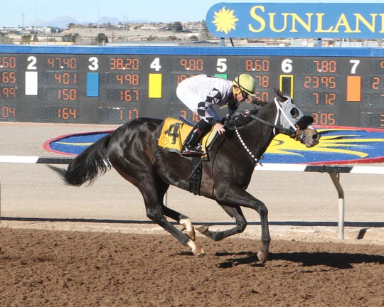 Dynasty of Her Own won the Borderplex Stakes Sunday at Sunland Park Racetrack & Casino on Sunday at Sunland Park Racetrack & Casino. The race was a prep for the Sunland Oaks in March.