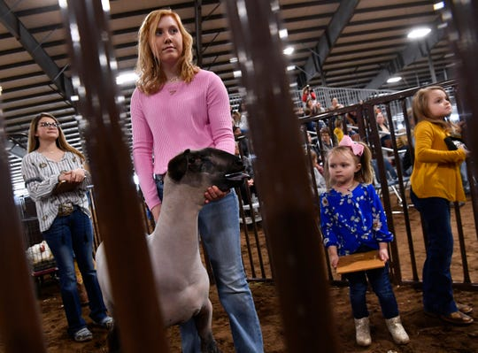 Berklee Whitley, 3, looks at her 16 year-old cousin Ashtyn Cooley's lamb while her 6 year-old sister Tynlee keeps an eye on the action in the sale ring Saturday. Ashtyn's lamb was the Reserve Grand Champion for medium wool at the Taylor County Livestock Show last week.