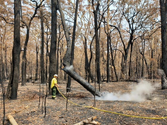 """Fire crews """"mop up"""" after a brushfire in New South Wales, Australia. More than 200 U.S. firefighting personnel are assisting the country in battling the historic fires."""
