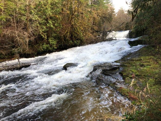 Alsea Falls, at the end of the Alsea Falls Trail.