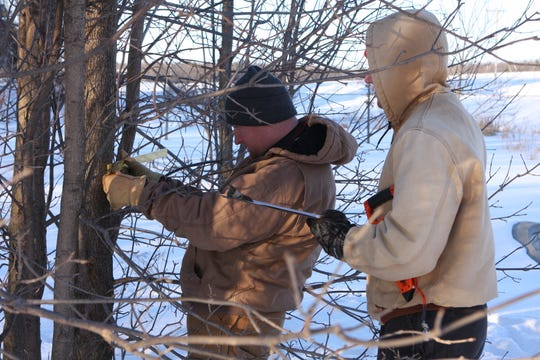 Students from Lakeland University's Plant Science course conduct an inventory of trees on campus in winter 2019 to pilot the inventory collection process that is being implemented in municipalities as a part of the ROOTS Urban Forestry Grant project.