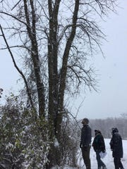 Dedicated volunteers examine an ash tree in the town of Sheboygan Falls as a part of a project to assist townships in the collection of data and the development of EAB recovery plans to help manage the loss of ash trees in our communities. This project is funded through the WDNR Urban Forestry grant.