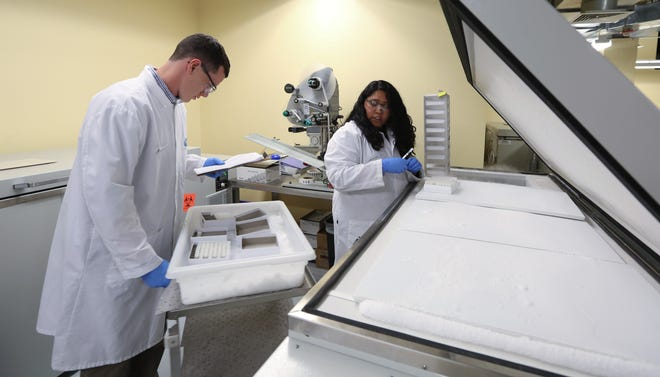 Serum samples are processed at Pfizer Vaccine Clinical Research in Pearl River Sept. 18, 2017.