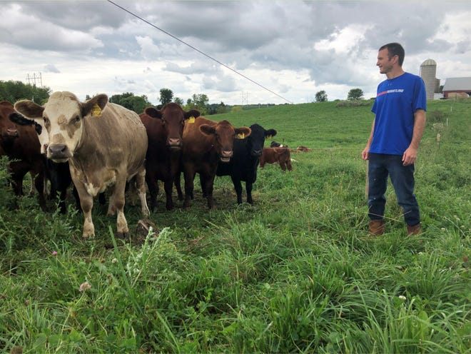Todd Van Groll of Brown County standing out on his pasture converted from cropland in 2017, gets ready to move the cattle to the next section.