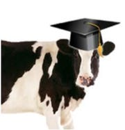 2020 Cow College