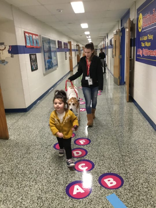 Addie DePersiis leads Forrest and his owner Hailey Waldron down the hallway in Mt. Horeb School.