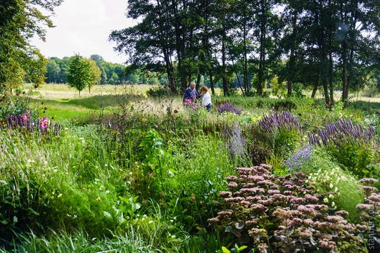 Four Season Gardening Method On Tap At Project Green S 2nd Sunday