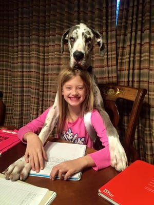 Madison Wegener, 9, with her dog Gatsby in her Hamburg Township home. Wegener died on Jan. 21, 2020 at age 14 from pulmonary hypertension.