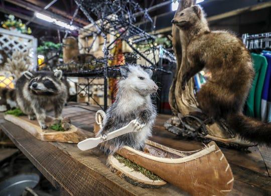 You might spot Lopez, the canoe-paddling opossum in Fleur de Flea . . but he isn't for sale.January 28, 2020