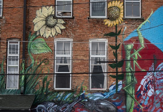 A dog in a window and a mural on the backside of Windwalker Underground Gallery in downtown Charlotte, pictured Tuesday, Jan. 28, 2020.