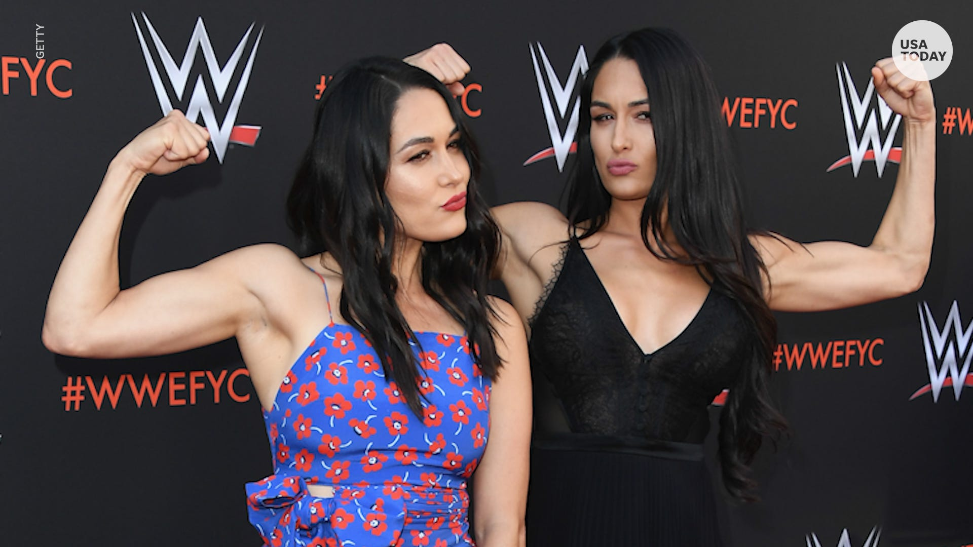 Brie and Nikki Bella Announce They Are Both Pregnant - WSTale.com