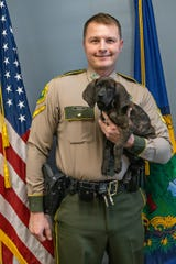 The Vermont State Police's newest member, K-9 Loki, is a 9-week-old Plott hound who will specialize in tracking missing persons and fugitives. She and her handler, Detective Trooper Chris Hunt, came to visit Headquarters in Waterbury on Tuesday, Jan. 28, 2020, for the first time since Loki arrived in the Green Mountains from the Texas-based breeder where VSP acquired her.