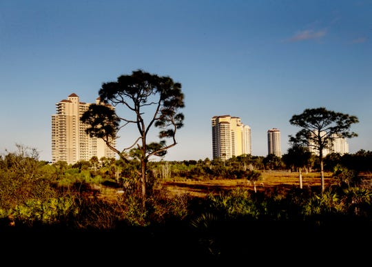 A marsh is seen in front of some of the towers at Bonita Bay on Thursday Jan. 30, 2020.