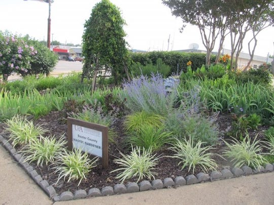 The community garden at the corner of U.S. Highway 62 and 9th Street was recently chosen as the Master Gardeners Garden of the Year. Judy Niziolek, project leader for the garden, accepted the award at the Master Gardeners 2019 Christmas party.