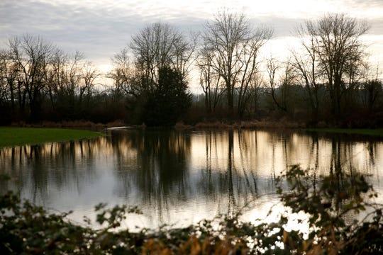 A field is flooded near Hazelgreen Rd. NE outside Silverton on Jan. 30, 2020.