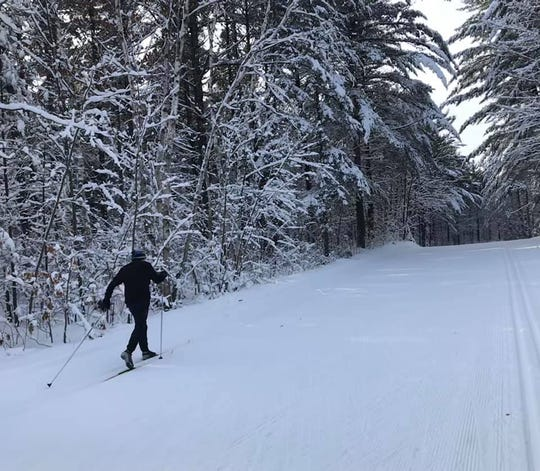 January snows transformed the cross-country ski area Nine Mile County Forest Recreation Area into a fairy-tale landscape.