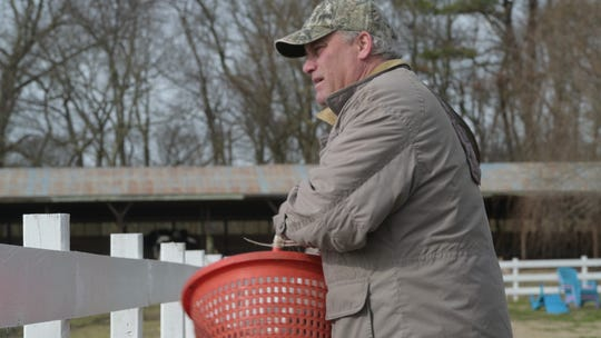 Daniel Holland, co-owner of Chesapeake Bay Farms, a dairy farm in Worcester County, throws some feed into a pasture for his cows and horses to eat on January 31, 2020.