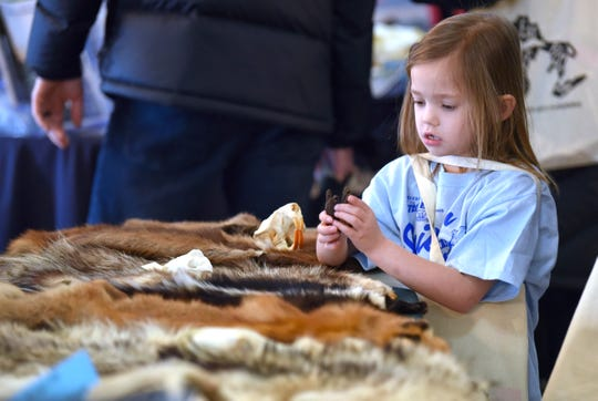 Victoria Edmonds, 6, of East Pointe, looks at animal skulls and pelts at the State Park Explorer Program table.