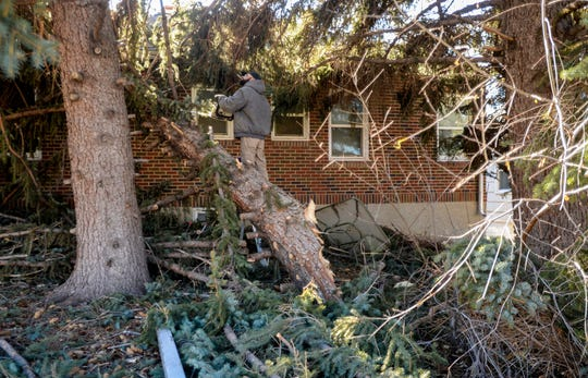 Dakota Cox removes the branches from a section of downed tree, which fell on his mother's house at 202 22nd Street South, during Saturday's record breaking windstorm.