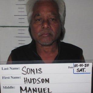 Hudson Manuel Sonis