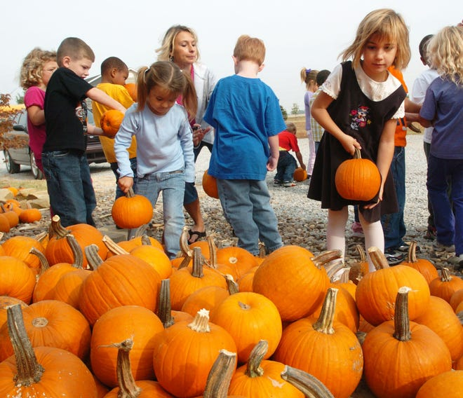Kindergarten and first graders from Morganfield tour J & L's Amazing Corn Maze at the Embry Farm on Larue Road in this file photo from 2004. That farmland is now going up for auction.