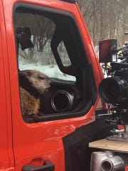 "Poppy on the set of filming for Jeep's ""Groundhog Day"" commercial."