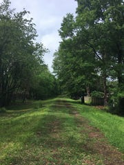 A view of the abandoned railroad corridor planned to become a new walkway and bike path for Lafayette with the help of a $5,000 grant from the national Rails to Trails Conservancy.