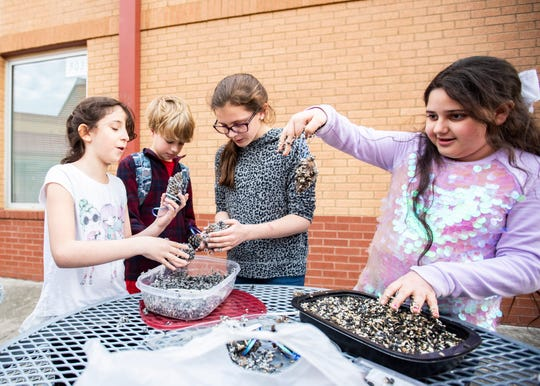 Garden Club students at Bailey Station Elementary make pine cone bird feeders Feb. 3 in Collierville, Tenn. This year the students might participate in the Great Backyard Bird Count.