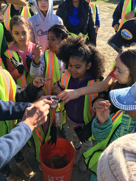 Children learn about plant seedlings during a January cleanup event at Ormond Beach.