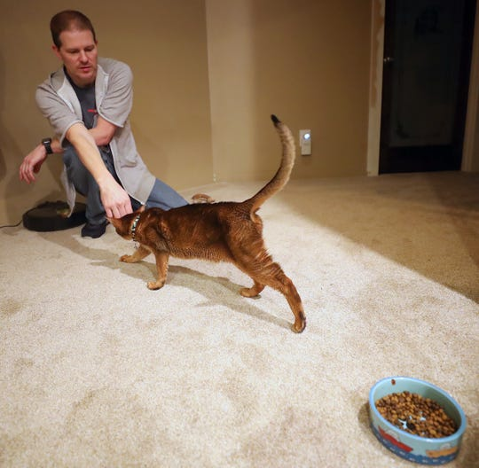 Patrick Moe pets Helix, the family's 5-year-old Abyssinian cat, at their home in Port Orchard on Tuesday, Feb. 4, 2020.