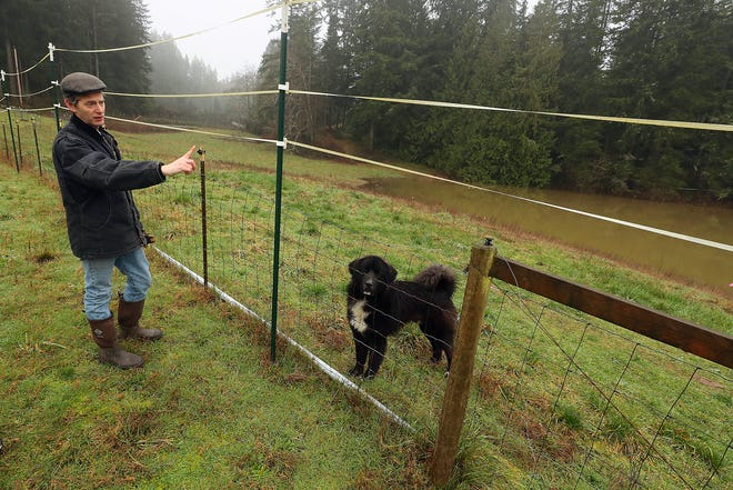 Greg Kaplan gestures to his pond beyond the fence that has been filling with runoff from the Stetson Heights development in Port Orchard on Feb. 5. The development remains out of compliance with state and city stormwater regulations.