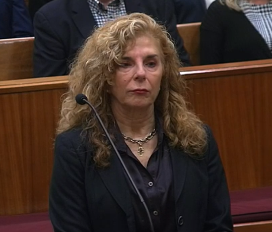 Brevard Circuit Judge Robin Lemonidis appeared before the Florida Supreme Court on Wednesday for a public reprimand.
