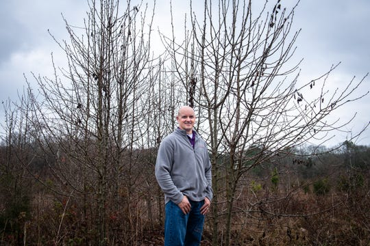 David Coyle, Assistant Professor of Forest Health and Invasive Species at Clemson University at a patch of Bradford pear trees in a field behind a cemetery in Pendleton, Wednesday, February 5, 2020.