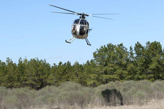 USDA used a helicopter like this one to target feral hogs at the Paddy Creek Wilderness Area last week.