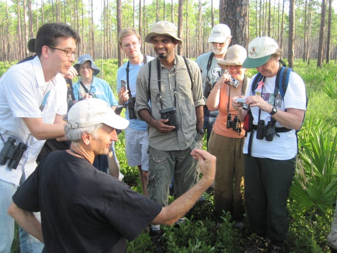 Jim Cox demonstrates bird banding in the Osceola forest.