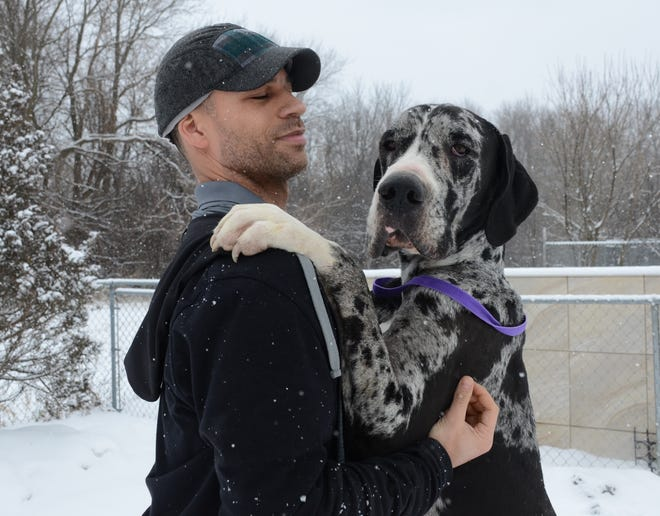 Tom Buford with a Great Dane seized Wednesday from a Battle Creek storage unit.
