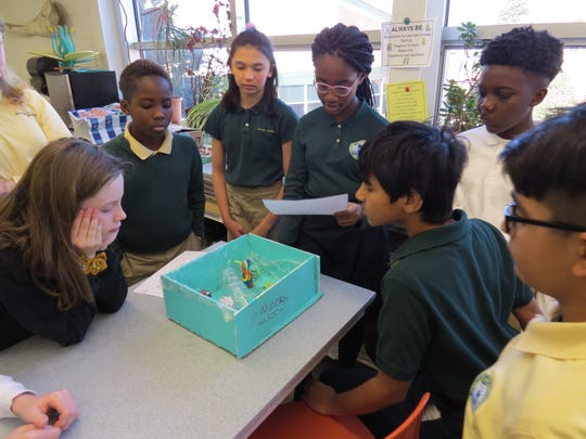 Sixth grade science students gather around to observe the cell project created by their classmates.