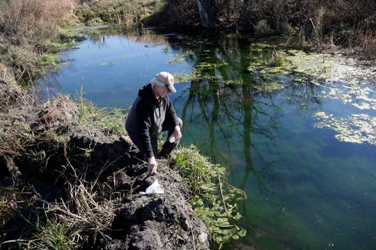"""In this Nov. 1, 2018, photo, Gordon Garrison takes a water sample from a stream on his farm, in Estherville, Iowa. Garrison sued a nearby operation with 4,400 hogs, contending manure from its croplands fouls a creek that runs through his property and feeds the Des Moines River. """"They're using me for a waste disposal site,"""" Garrison said."""