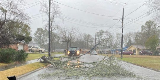 Part of a tree down on Spring Valley Road at the intersection of Adler.
