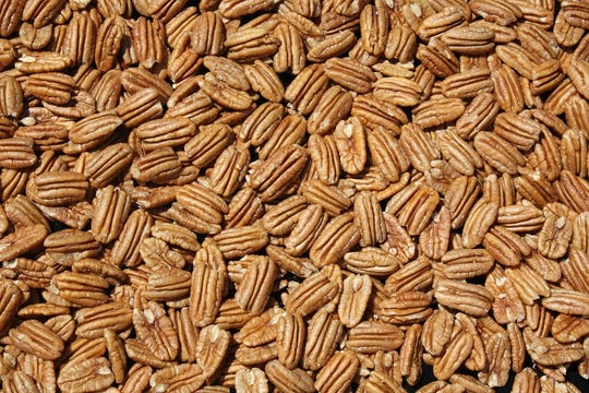 New Mexico's utilized pecan production in 2019 reached a record high 96.6 million pounds,